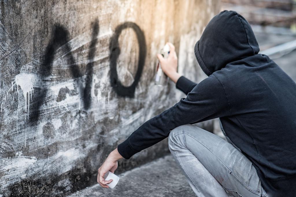 anticosial crime
